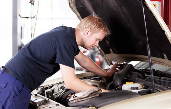 Car maintenance tips for all drivers